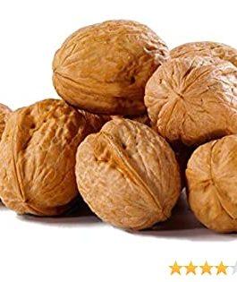 Premium Walnut/Akhrot – Inshell 500 GM