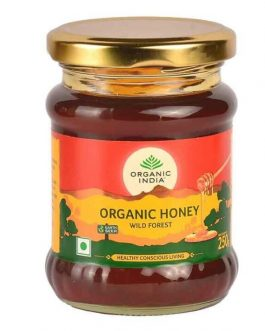 ORGANIC INDIAN WILD FORST HONEY BTL 250g